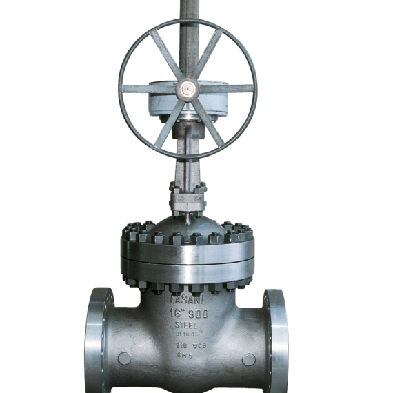 Bolted Bonnet Gate Valves