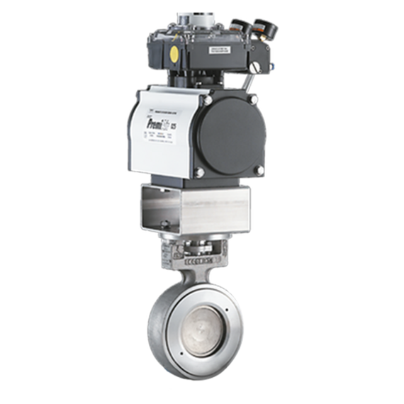 WINN Hi-Seal High Performance Butterfly Valve